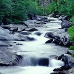 عبر من الحياة , نهر الجنون !