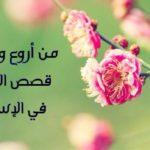 قصص عن الزواج قصة زواج الصحابي جليبيب رضي الله عنه
