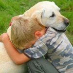 وفاء كلب قصة جميلة جدا عن الوفاء