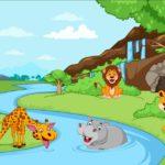قصص ميكي للاطفال من عمر 3 سنوات قصة محكمة الغابة