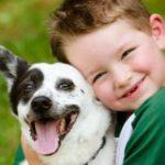 قصة الكلبة فلة قصة جميلة وممتعة جداً احداثها مسلية للأطفال