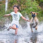 قصة خيالية مثيرة من الحكايات الشعبية عند الغجر بعنوان الفتاة والكلب