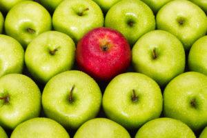 قصة التفاحة الفاسدة وقصة جزاء الكسل حكايات قصيرة ومفيدة
