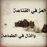 نهاية الطمع قصة جميلة ومعبرة بقلم : فاروق حسان