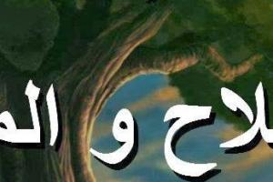 قصة الفلاح والملاك حكاية من التراث الاسلامي بقلم : وسيم عبد الكريم عبد اللاه