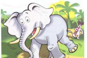 قصة الفيل والأرنب بقلم : عبد الفتاح محمد العيسوي