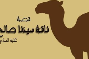 قصة ناقة صالح عليه السلام مكتوبة بشكل مبسط للأطفال بقلم : عبد الله الطنطاوي