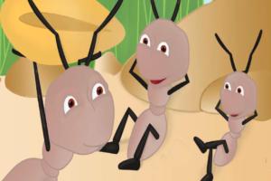 قصة النملتان الكسولتان قصة قصيرة مسلية جداً بقلم : صفية البكري