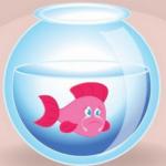 قصة السمكة والبلبل قصة مسلية تجلب النوم للأطفال