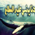 قصص الانبياء سيدنا يونس في بطن الحوت