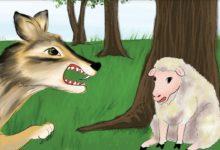 قصة الذئب والكلاب للأطفال قبل النوم