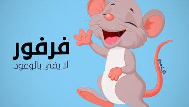 قصة الفأر فرفور