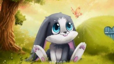 الأرنب الكاذب والحريق