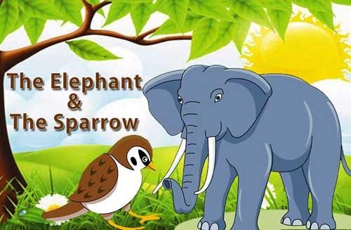 قصة الفيل الصغير والعصفور