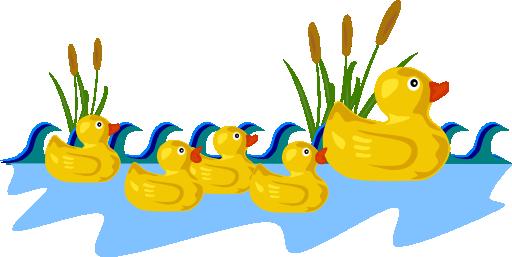 البطة طاطا وحبات الذرة