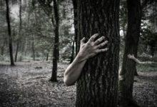 الغابة المرعبة