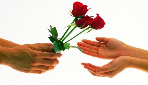 هدية وردة جميلة