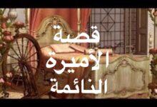 قصة الأميرة النائمة.