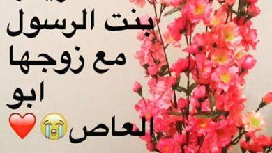 قصة حب زينب اينة رسول الله لزوجها.