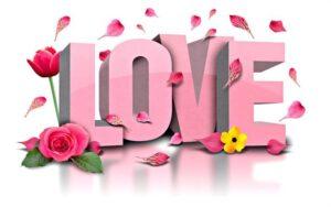 الحب.