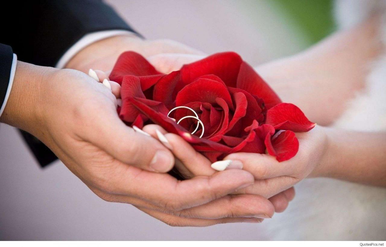 ورود حمراء بين يدي زوجين.
