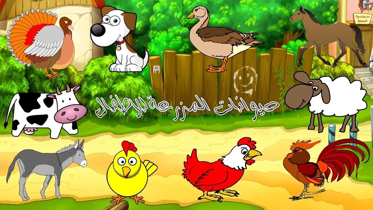 حيوانات المزرعة.