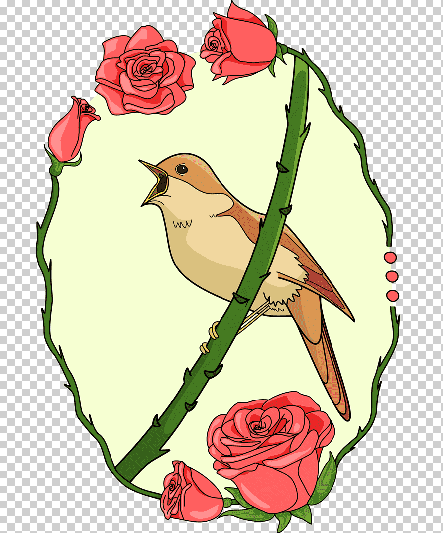 قصــــــــــة العندليب والوردة الحمراء.