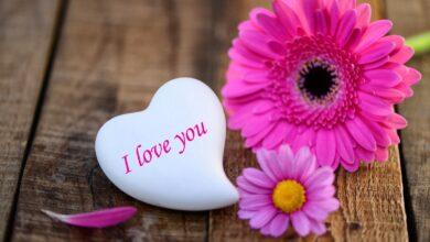 قلب أبيض وزهور وردية اللون.