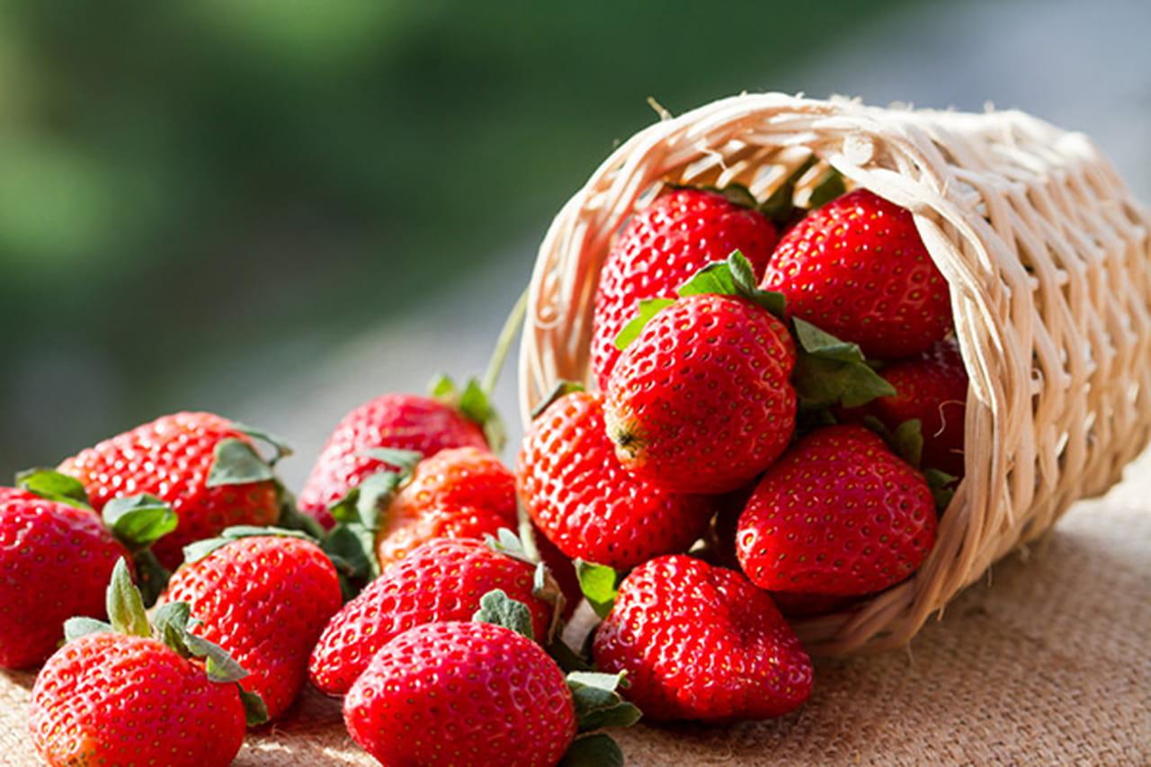 سلة فراولة