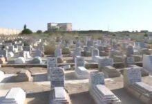 صورة لمقبرة.