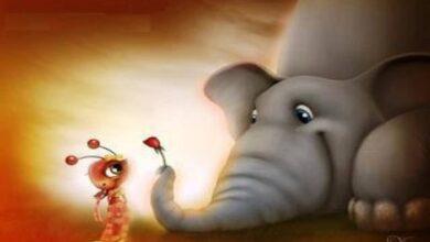 قصة الفيل والنملة
