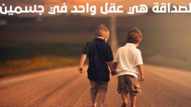 المعنى الحقيقي للصداقة