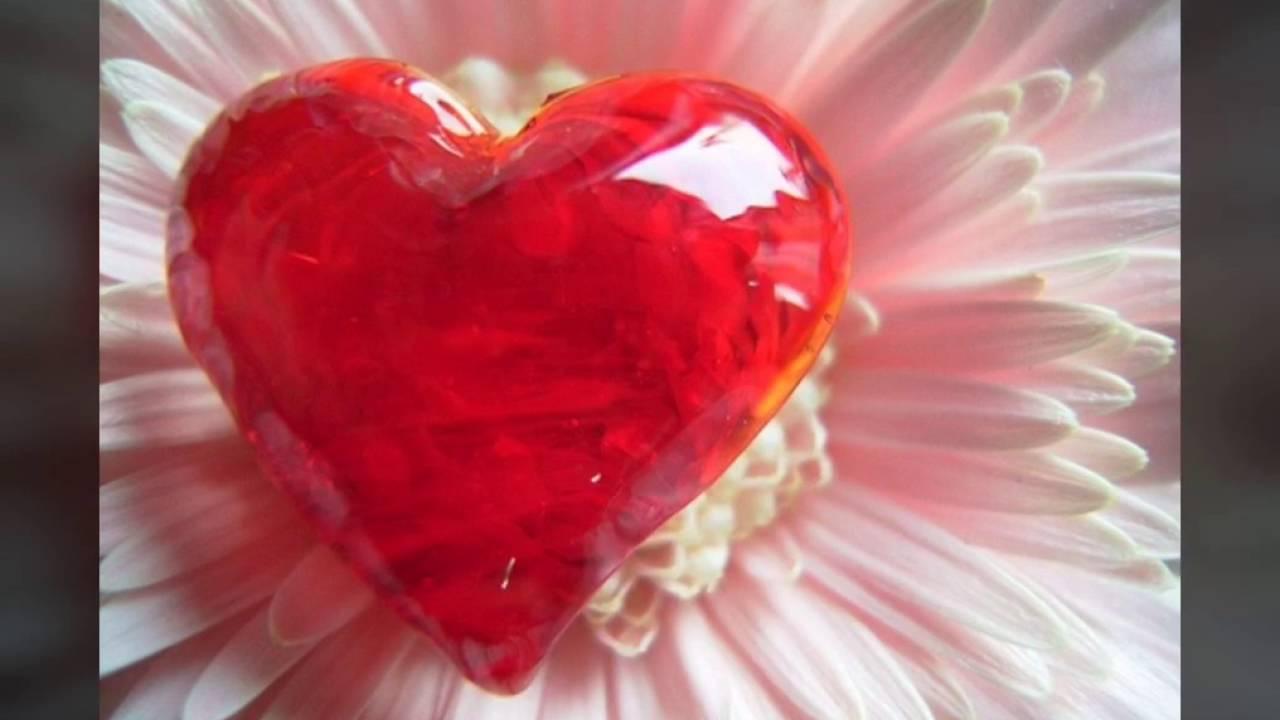 صورة تجسد الحب الحقيقي